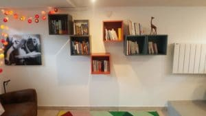 livres bibliothèque rangement organiser